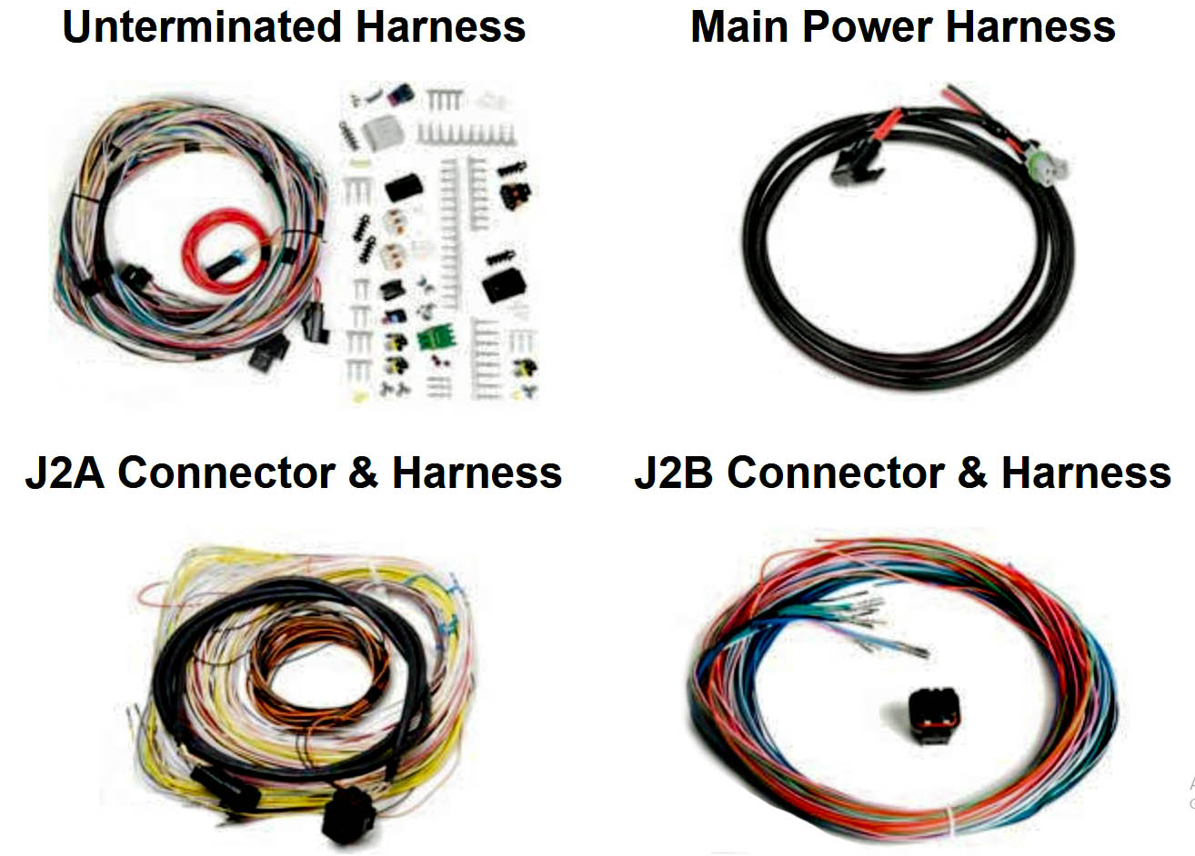 MPS Wiring Harness for Holley EFI ECU on abs wiring harness, airbag wiring harness, ecm wiring harness, steering column wiring harness, injectors wiring harness,