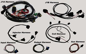 MPS Hayabusa Terminated Holley EFI Harness