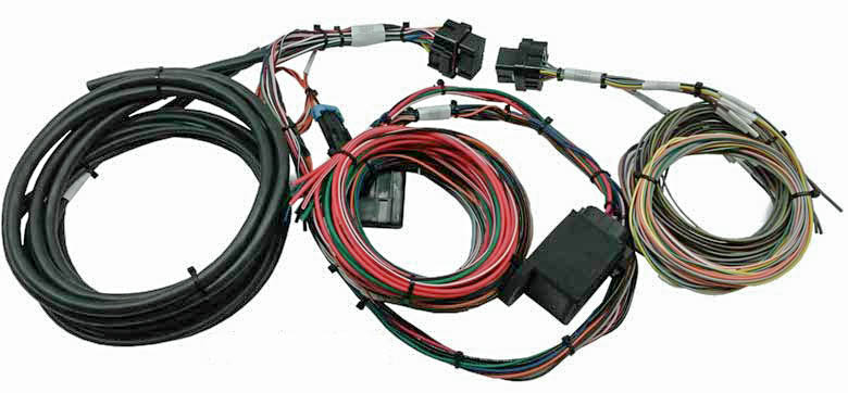 MPS Weeded, Tied and Labeled Holley EFI Harness